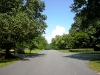 Tree lined streets in Providence Plantation