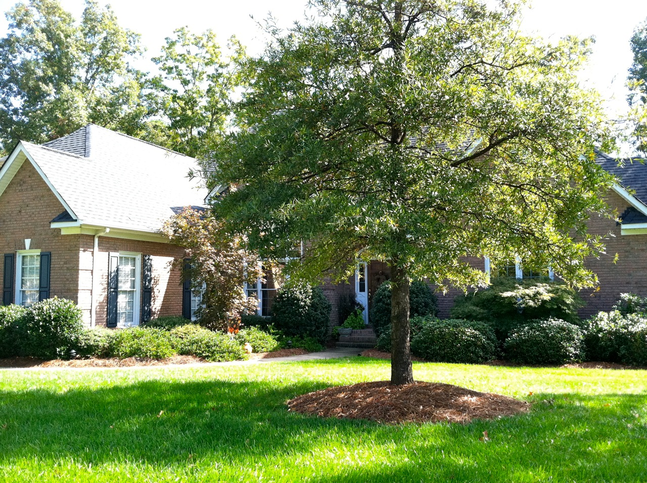 Ranch Homes for Sale in Charlotte Area Shannamara