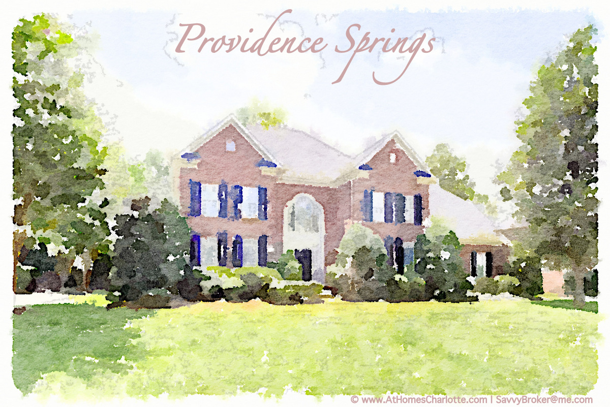 Providence Springs Home for Sale