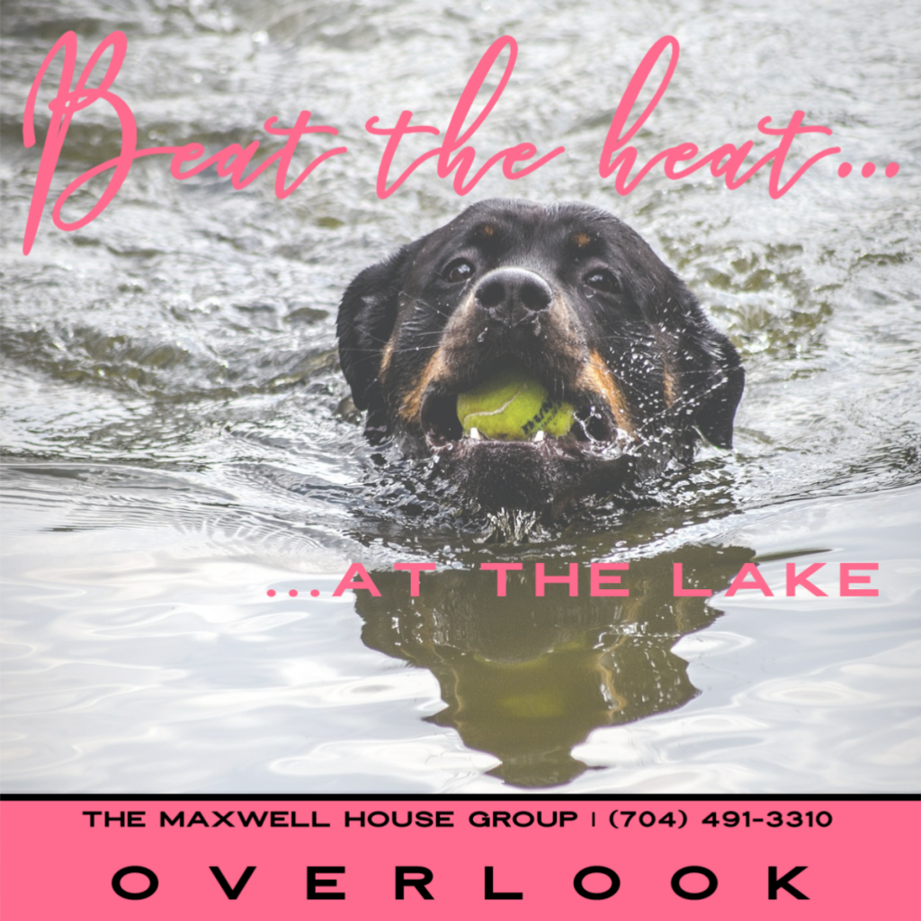 Beat the heat at Overlook